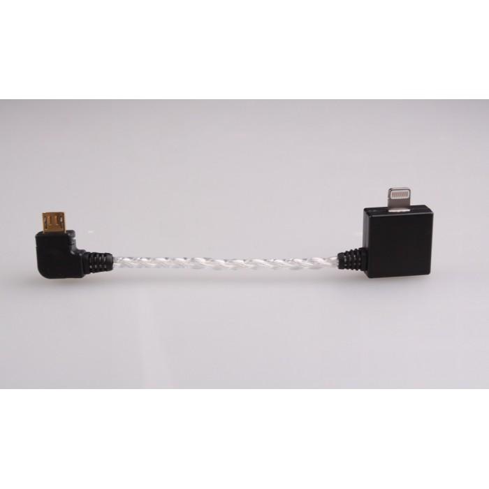 lighting cord. Lightning To Micro USB Pure Silver Decoding Cable For Mojo/Hugo - Mojo/ Lighting Cord
