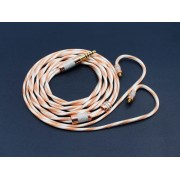 PAC480 IEM Cable